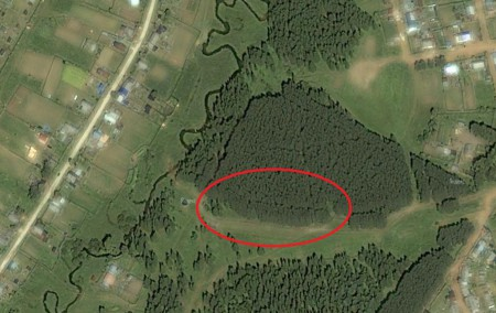 Бажинский лес. Вид со спутника