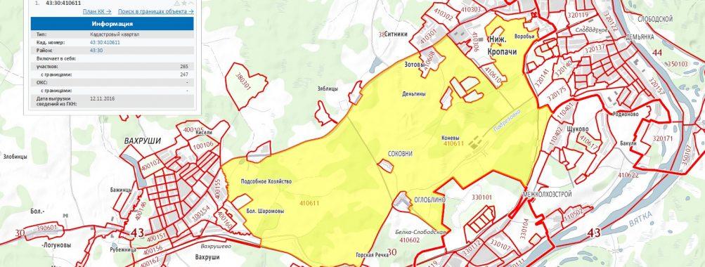 Карта кадастрового квартала 43:30:410611
